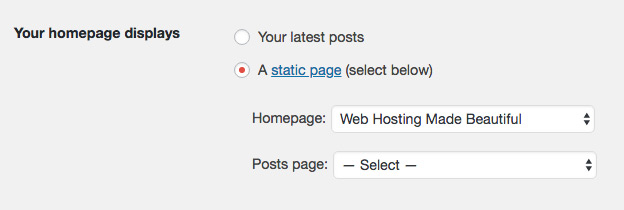 WordPress Homepage Settings